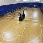 羽毛球排球馆地板 施工体育地板的厂家 体育运动木地板